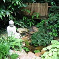 Best Landscaping In Sri Lanka Japanese Garden Styles In Colombo
