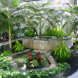 Sri lankan landscaping best indoor gargen designers of for Home landscape design sri lanka