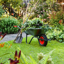 Landscaping In Colombo Garden Maintenance Company In Sri Lanka